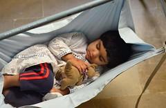 Nainoo sleeping, Karachi (Ameer Hamza) Tags: pakistan sleeping 2 toy nikon play sleep daughter zainab kangroo 2016 ppa jhoola pakistaniphotographer ameerhamza d7000 ameerhamzaadhia travelsacrosspakistan ameerhamzaphotography mydaughtersleeping zainabhamzaadhia