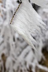 _MG_1076 (schamrock77) Tags: winter italy mountain ice freezing natura inverno montagna friuli ghiaccio galaverna canon6d 35f2is