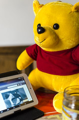 06/52_Winnie the pooh_Winnie is conneted and he look your work (regis.muno) Tags: composition winniethepooh peluche winnielourson nikond7000 52weeksthe2016edition week62016 weekstartingfridayfebruary52016