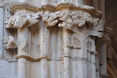 Claustre del monestir de Santes Creus (Monestirs Puntcat) Tags: abbaye claustro monestir cloitre claustre creus santes