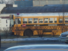2011 IC RE - Owensboro Independent 2111 (Seasonal Spectacular) Tags: international schoolbus typed icre owensboroindependent