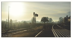 colores (_Joaquin_) Tags: sol ex tren uruguay dc nikon sigma colores caminos amanecer joaquin semaforo montevideo 1020mm lineas dx ferrocarriles vias afe hsm d3200 destinos ozcar joafotografia joalc lapizaga