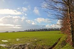Paysage de Fvrier (Corinne Lejeune Girot) Tags: ciel nuage campagne