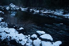 dive in (renrenskyy) Tags: winter snow yosemite nationalparks