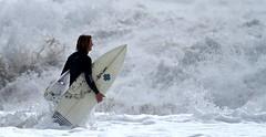 IMG_5672 (supercrans100) Tags: beach photography big waves surfing calif seal skimboarding bodyboarding bodysurfing so
