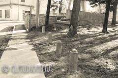 Spoon River Anthology Eugene Carman (claudionimuc) Tags: art rural america de poesia crema seppia 2015 morti pivano edgarleemasters pavesi spoonriver fernandapivano antologia selenio andre