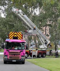 203 and 2015 (adelaidefire) Tags: pink classic fire day south australian mothers service sa metropolitan metz scania mfs skylift bronto rosenbauer 1401 samfs 0074 sasgar