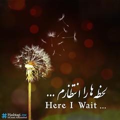 #    #  .       #  !        #                   ...    # #      ...      (MOsi Puase) Tags: mosi mostafa  hashtag hashtagi  askarnezhad mrhashtagi hashtagime