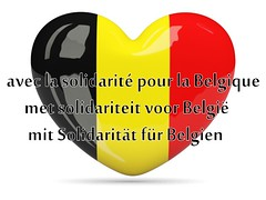 My heart is heavy for the people of Brussels and Belgium.  A senseless tragedy. (milomingo) Tags: red brussels black yellow heart belgium text whitebackground solidarity onwhite 03222016