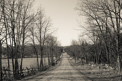 The Road is Long (gabi-h) Tags: road trees monochrome rural fence landscape forlorn gabih cedarrailfence hastingscounty