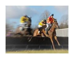 OVERTON STEEPLECHASE (Lucky Del) Tags: uk sport scotland jockey horseracing 2010 steeplechase pointtopoint clydevalley derekmonaghan overtonfarm