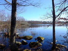 lake (larsniel) Tags: blue trees sky sun lake water spring rocks sweden h