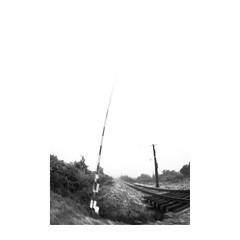 i n t e r p e r c e p c i o n e s (creonte05) Tags: chile blackandwhite bw blur photoshop square landscape nikon paisaje estudio explore 8mm marzo curico 2016 cuadrado fondoblanco explored bconegro d7100 eduardomiranda interpercepcion