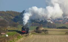 BR Class 4MT 76084, 16th March 2016. (chrisdoward) Tags: preserved railways 2016 nnr 76084 d5631 bridge304 mgnrs weybournetractiongroup 76084locomtivegroup