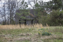 Nobody's Home (paulawalla37) Tags: abandoned kentucky oncewashome