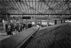 Rotterdam Blaak (Hans de Meij) Tags: street blackandwhite monochrome station architecture analog rotterdam blaak d76 kodaktrix 135 nikonfm2 nikkor50mm114 reflectaproscan10t
