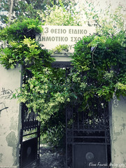 abandonment (braziliana13) Tags: door old tree green nature oldstyle greece abandonment chios      greekiland
