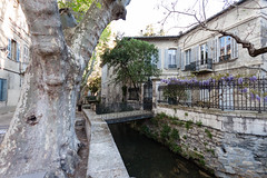 Rue des Teinturiers (Marcello Largoghibli) Tags: france avignon provencealpesctedazur