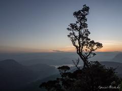 Sri Pada sunrise (Ineound) Tags: macro nature sunrise landscape four adams dusk spiegel natur peak olympus sri micro srilanka makro landschaft sonnenaufgang blick omd thirds 1250 pada m43 mft 1250mm em5 f3563 spiegelblick microfourthirds 43 spiegelblickde olympus1250mmf3563 olympusm1250mmf3563 mzuikodigitaled1250mmf3563ez olympus1250mm mzd1250 spiegelblickde