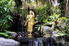 Peaceful@Golden Mount (*vv!n*) Tags: plants mountains temple golden peace silent image buddha peak monks quite