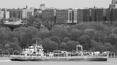 NORTH RIVER DEP Sludge Vessel, Hudson River, New York City (jag9889) Tags: nyc newyorkcity blackandwhite bw usa ny newyork water monochrome river newjersey unitedstates outdoor manhattan unitedstatesofamerica vessel hudsonriver dep sludge edgewater waterway washingtonheights wahi 2016 departmentofenvironmentalprotection jag9889 20160422