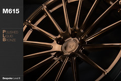 m615-polished-liquid-bronze (AG Wheels) Tags: wheel bronze flow design paint stage painted coat spoke spokes wheels powder finish designs form rim rims liquid avant garde multi forged rotary polished concave finishing avantgarde bespoke flowform powdercoat m615 agwheels