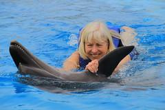 Freda pulls Genie upside down (greggburch) Tags: cabosanlucas caboadventuresdolphinswim