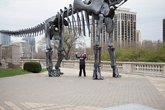 nathalie. field museum. 2015 (timp37) Tags: field museum skeleton dinosaur nat nathalie bones april 2015
