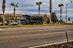 Black Truck (FOXTROT|ROMEO) Tags: street black car truck orlando florida palm pal fla palme lkw