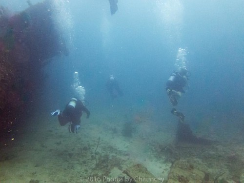 Great dive with #capecoraldiveclub at the HMS Mariner from Easter Sunday this year