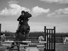 Butted (Cosmo Coughlin) Tags: horse landscape jumping action equestrian