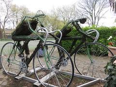 UK - London - Lambeth - Archbishop's Park - Topiary cyclists (JulesFoto) Tags: uk england london cyclists topiary cyclist lambeth ramblers archbishopspark capitalwalkers