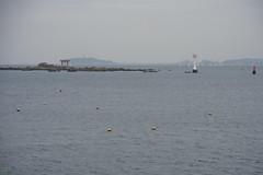 20160424-DSC_8899.jpg (d3_plus) Tags: sea sky fish beach nature japan nikon scenery diving daily snorkeling  28105mmf3545d nikkor  kanagawa hayama     dailyphoto  apnea  thesedays  28105    28105mm skindiving  zoomlense     28105mmf3545 d700 281053545 nikond700 aiafzoomnikkor28105mmf3545d 28105mmf3545af   aiafnikkor28105mmf3545d