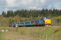 37419 Santon Downham 30/04/16 - Short Set in the woods - The Greater Anglia short set is seen in the unfamiliar surroundings of Santon Downham with 'The EACH Express' heading to Ely. 37419 brings up the rear as 37405 leads. (rhayward92) Tags: rail class line express 37 each services direct santon the downham breckland drs 37419