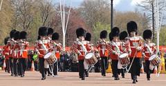 1st Battalion,irish corps of drums,irish guards 23 04 2016 (philipbisset275) Tags: unitedkingdom centrallondon irishguards cityofwestminster 1stbattalion englandgreatbritain irishcorpsofdrums 23042016