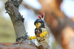 (OlleMoquist) Tags: toy lego indian legophotography