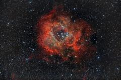 玫瑰星雲 Rosette Nebula NGC2237-2239 (Daniel Chang) Tags: ngc mount pi nebula takahashi rosette em10 reducer 2239 2244 12mon 2237 2238 2246 2252 autoguider fs60c astrometrydotnet:status=solved astrometrydotnet:id=nova1369658 sky90mm 20130908ncg22372239rosettenebulalocationcingjingstarrynantoutaiwancameracanoneos40dmodiso1600telescopetakahashisky90mmreducerf45filterlpsp2focallength407mmmountem10autoguiderfs60cdbk21af04asexpo dbk21af04as