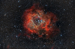 Rosette Nebula NGC2237-2239 (Daniel Chang) Tags: ngc mount pi nebula takahashi rosette em10 reducer 2239 2244 12mon 2237 2238 2246 2252 autoguider fs60c astrometrydotnet:status=solved astrometrydotnet:id=nova1369658 sky90mm 20130908ncg22372239rosettenebulalocationcingjingstarrynantoutaiwancameracanoneos40dmodiso1600telescopetakahashisky90mmreducerf45filterlpsp2focallength407mmmountem10autoguiderfs60cdbk21af04asexpo dbk21af04as