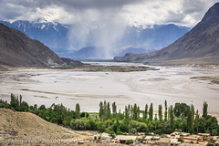 Summer Scenery, Shigar Valley, Gilgit-Baltistan, Pakistan (Feng Wei Photography) Tags: travel pakistan mountain horizontal river landscape outdoors asia nopeople kashmir pk scenics colorimage highangleview indiansubcontinent shigar shigarvalley gilgitbaltistan shigarriver scenerynonurbanscenelandscape centralkarakoramnationalpark