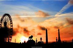 Sunset in place de la concorde (jmlpyt) Tags: city sunset paris france square streetlight eiffeltower citylife illuminated transportation obelisk ferriswheel onthemove placedelaconcorde parisfrance urbanscene espacesverts lightingequipment