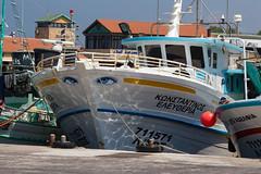 Forward Looking (bart7jw) Tags: summer canon greek harbor boat eyes cyprus sigma 18250 phaphos 700d t5i