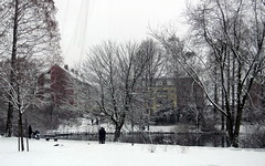 Stieghorst park tram lines Bielefeld Germany 26th January 2014 snow  26-01-2014 14-29-17 (dennoir) Tags: park snow lines germany january tram bielefeld 26th 2014 stieghorst 26012014 1429018