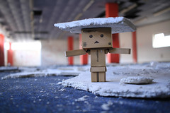 Cardbo (Never A Dull Moment.) Tags: abandoned urbandecay urbanexploration derelict ue urbex yotsuba danbo derp amazoncojp boxman revoltech danboard cardbo