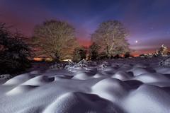Nubes de algodón (Alfredo.Ruiz) Tags: snow lightpainting sunrise canon noche nieve amanecer alava opakua ef1740 entzia eos6d chicosdelalva