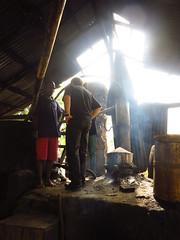 IMG_7939 (alexandre.vingtier) Tags: haiti cap rum nord rhum haitien clairin