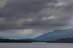 LochLomond_RossPriory_20150811_IMGQ9244_s (Andrew-Holloway) Tags: lochlomond rosspriory