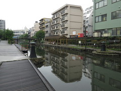 IMG_8717 (Momo1435) Tags: japan tokyo koto kotoku