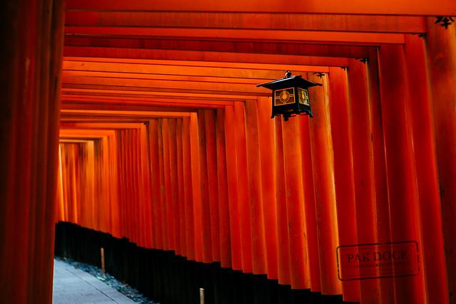 Lamp - Fushimi Inari. Japan