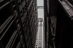 New York (Dimitri Tenezakis) Tags: ny newyork wallstreet towardsthesky