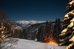 Flaming Torches At Night (Markus Trienke) Tags: longexposure trees winter mountain snow mountains cold tree ice night forest canon de bayern deutschland eos frozen nightscape allgu oberallgu 70d obermaiselstein